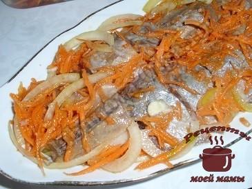 Маринованная селедка с морковкой и луком готов