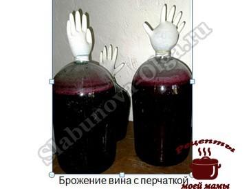 Домашнее вино из винограда, с перчаткой