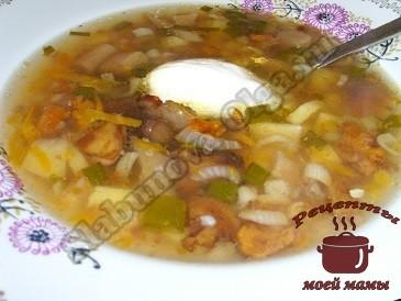 Грибной суп из свежих грибов без мяса